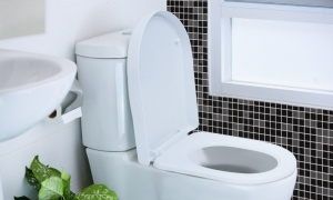 D Shaped Soft Close Toilet Seat