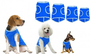Crufts Pet Cooling Vests