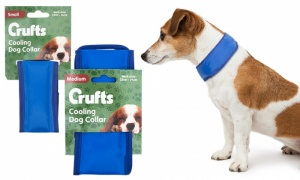 Crufts Cooling Dog Collar