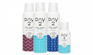 Day 2 Dry Wash Clothes Spray