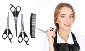 Hair Dressers Scissors Set