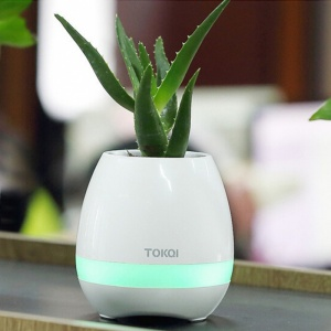 Magic Music Flowerpot Speaker