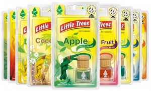 Little Trees Bottles Car Air Freshner