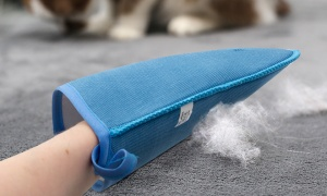 Upholstery & Pet Hair Cleaning Mitt