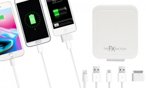 Powabud 3in1 Dual Travel Charger