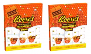 Reese 247G Advent Calendar (pack of 2)