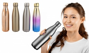 Assorted Stainless Steel Double Wall Drinking Bottle