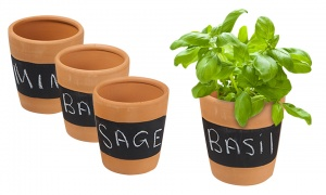 Set Of 3 Terracotta Chalkboard Herb Planters