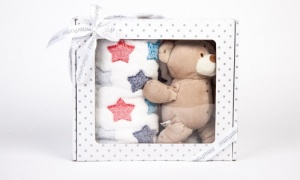 Teddy Bear And Cupcake Blanket Pink