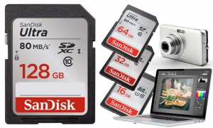 SanDisk Ultra SDHC Memory Cards Class 10