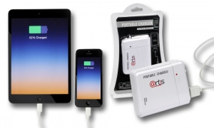 Portable AA Battery Charger for Smart phone