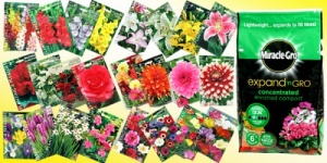 173 Piece Spring Bulb Hamper & Miracle Gro Compost