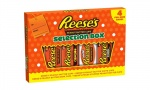 Reeses Selection Box