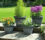 Georgian Style Garden Planters 4 Pack