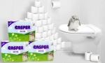 Casper Classic White Toilet Rolls  - Pack of 60