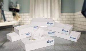 6 X Boxes Whisper Family 2 Ply Tissues